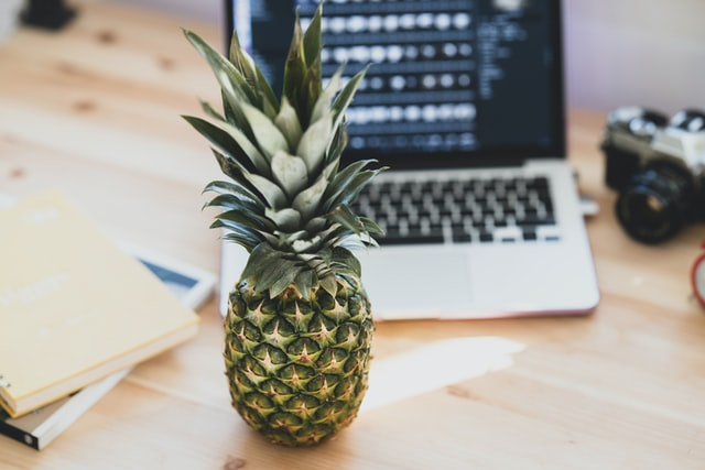 pineapple_and_laptop